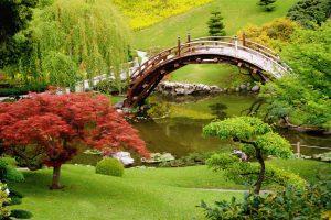 Haveanlæg, som passer til dit flotte hus